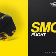 Bulls NL 2020 Dart Collection Launch Smoke Black, Silver, Gold Dartflight