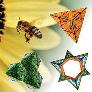 GeoBender® Cube Würfel magnetisches 3D-Puzzle Neuheit 2020 Modell Bees