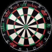 Darts Team Germany Max Hopp und Martin Schindler Dartboard im Set enthalten