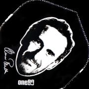 one80 Dart Elmar Paulke Dartflight Standard Seite 1