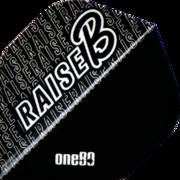 one80 Darts Raise B Dartflight