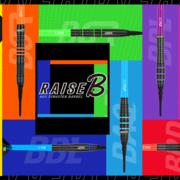 one80 Soft Darts Raise B 80% Tungsten Softtip Dart Softdart 2021
