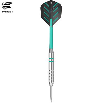 Target Steel Darts Rob Cross Silver Voltage 2018 Steeltip Darts Steeldart 24 g