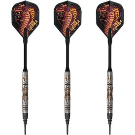 Unicorn Soft Darts World Champion Phase 2 Jelle Klaasen...