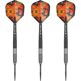 Target Steel Darts SWISS Point Raymond van Barneveld RVB...