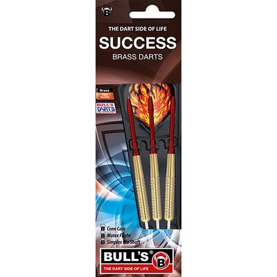 BULLS Success Steel Dart 22 g